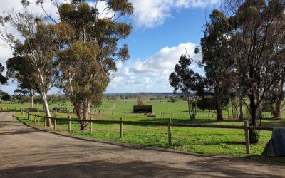 Collaborating with the Melbourne Arboretum